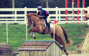 Grid post arenaeventing2