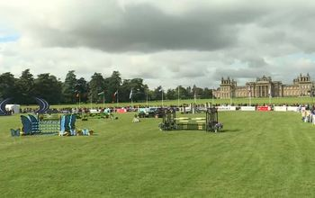 Grid post blenheim 8 and 9 show jumping