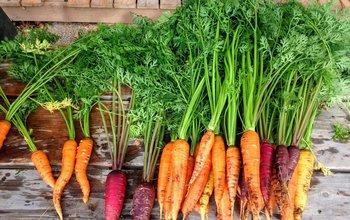Grid post grow your own veg