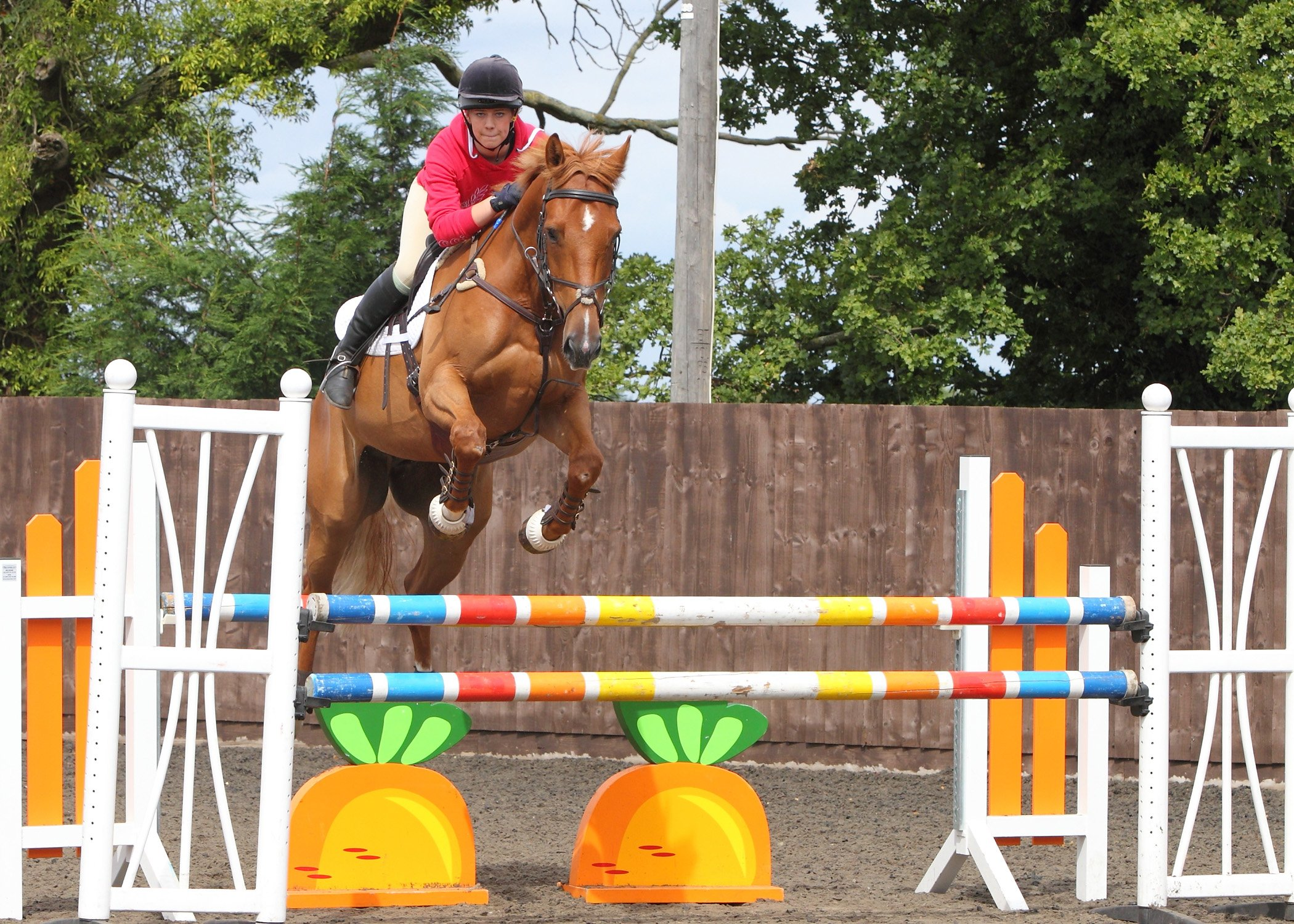 Tales from a BE volunteer: show jumping steward