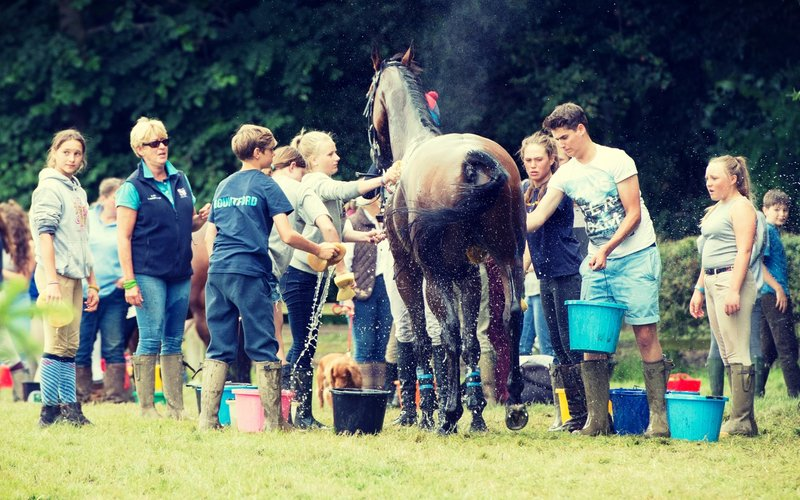 British Eventing Life | Cross country aftercare