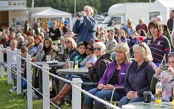 Grid post spectators