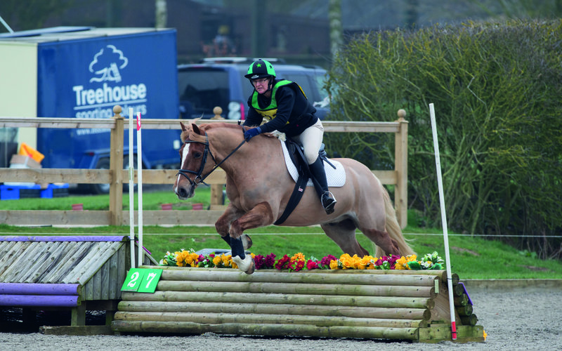 Normal post be80 champ arena eventing carol fletcher